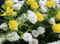 好きな色のお花で祭壇を飾って下さいました