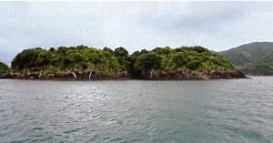 サービス館 カズラ島