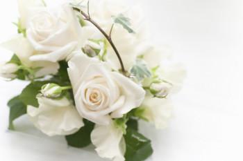 板橋区の葬儀のことならお任せを、多様化する現代の葬儀!