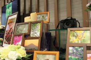 生前撮影した多くの風景を展示